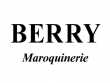logo-carrefour-berry
